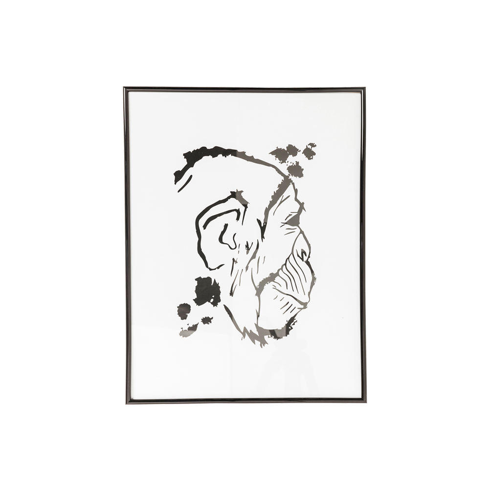 Picture Frame Monkey Face 50x38cm