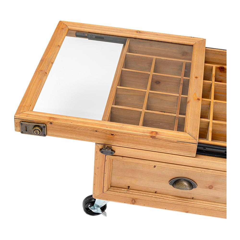 コレクターダブルネイチャー 100x58cm コーヒーテーブル
