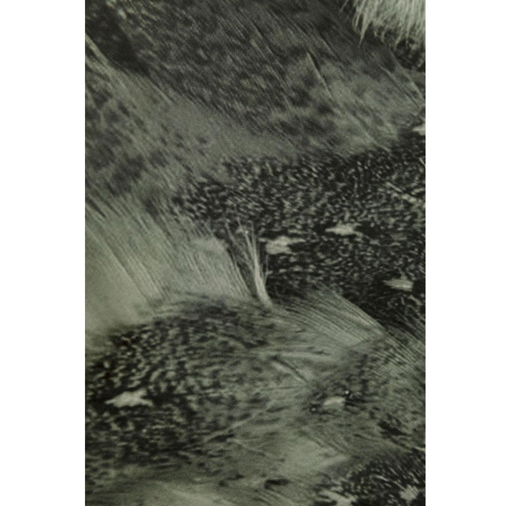 オウルフェイストゥー 60×60 cm ガラスアート