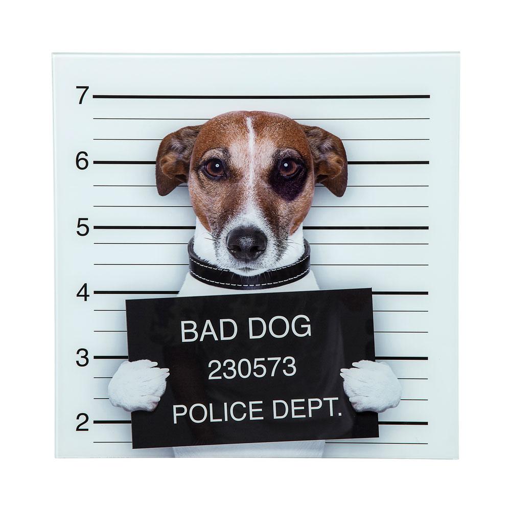 【在庫切れ】Picture Glass Bad Dog 40x40cm