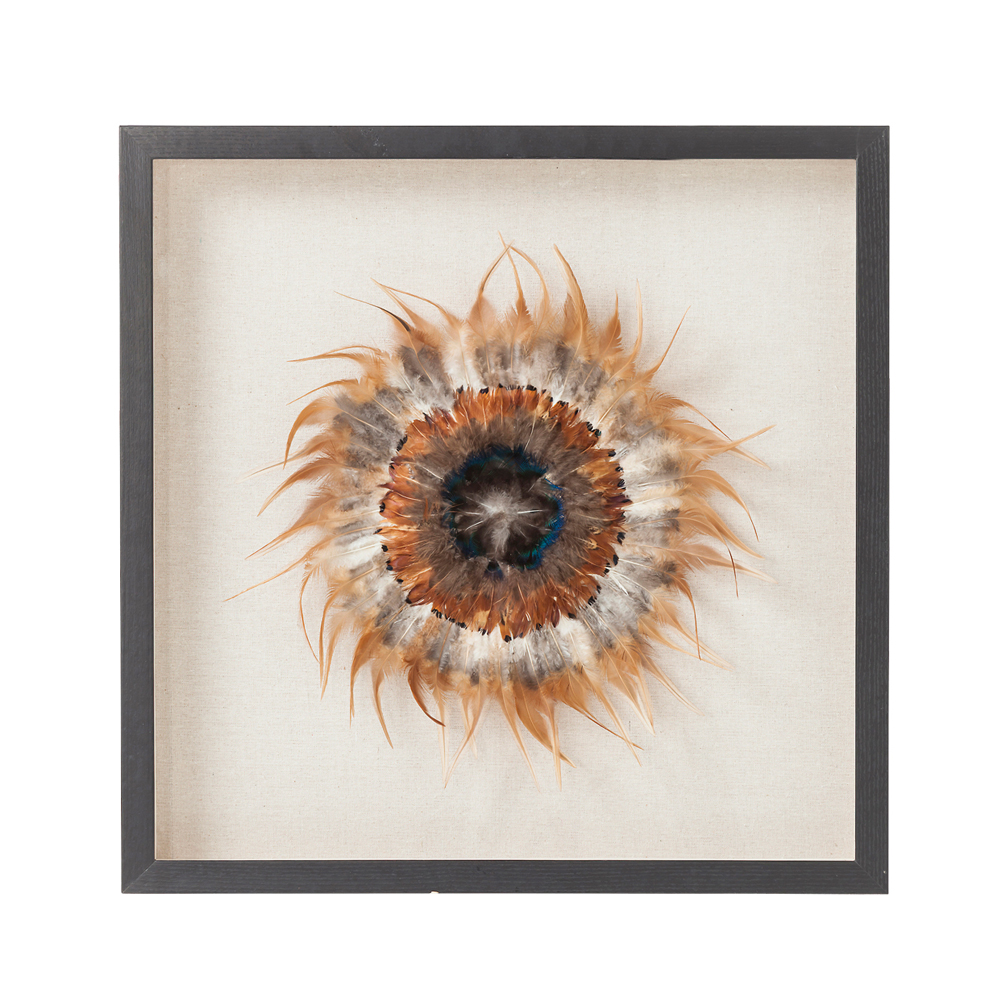 Deco Frame Dreamcatcher Nature